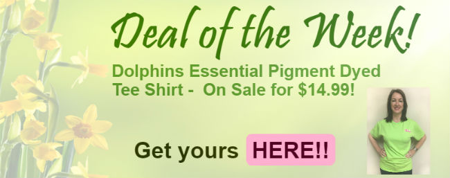 Deal of the Week! Dolphins Essential Pigment Dyed T-Shirt on sale for $14.99
